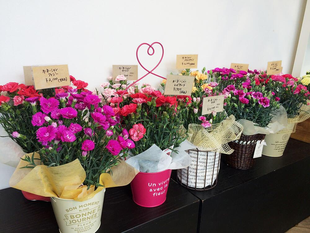 母の日 Soel Flowers 豊橋 花屋