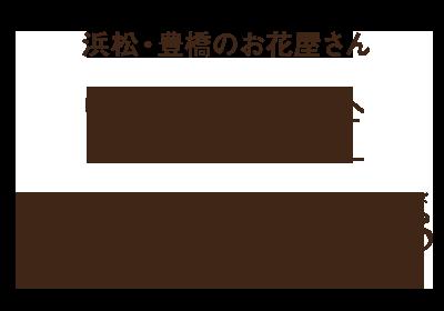 浜松・豊橋のお花屋さん 花風舎/Soel Flowers