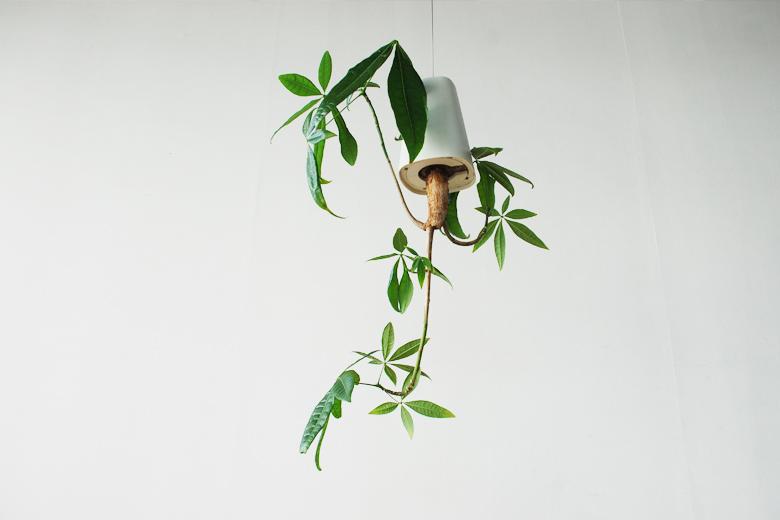 skyplanter スカイプランター