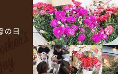 豊橋 花屋 母の日 2018