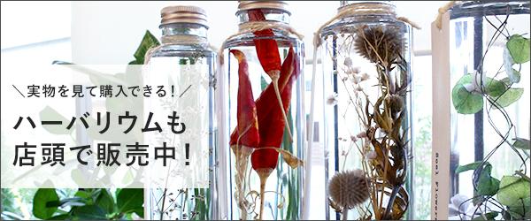 ハーバリウム 母の日 豊橋Soelflowers