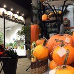 ジャックオーランタンを作れる本物のかぼちゃご注文受付中!